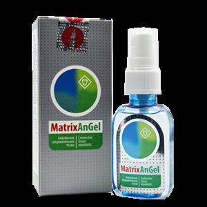 MatrixAnGel: Аквабиотик соединительной ткани