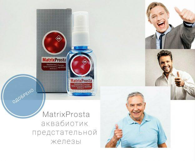 MatrixProsta